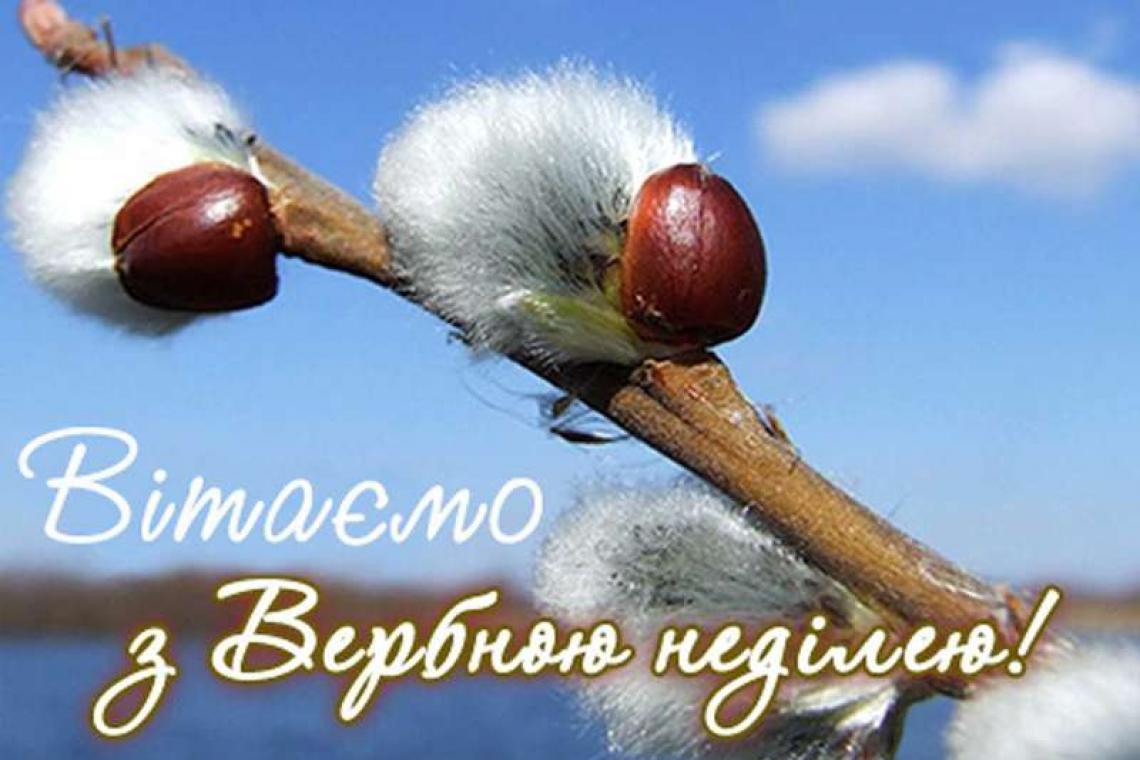 звание на украинском поздравление с вербным воскресеньем этом эволюция полета
